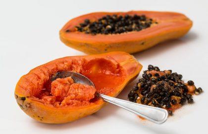 מגשי פירות לאירוח